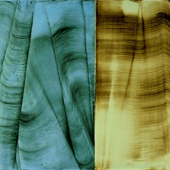 """Flutter (diptych), pigment and PVA, 27"""" x 37"""" x 1.25 (2 panels 27X17 & 27X20)"""